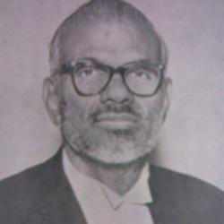 S. P. Adithanar Age