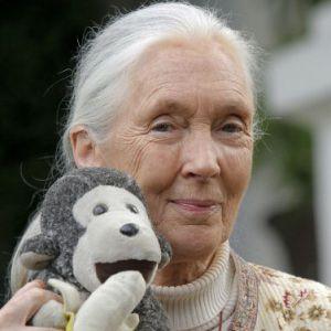 Jane Goodall Age