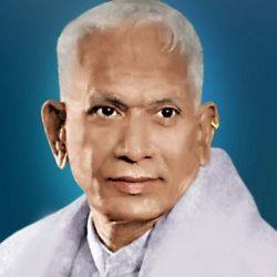 Sthanam Narasimha Rao Age